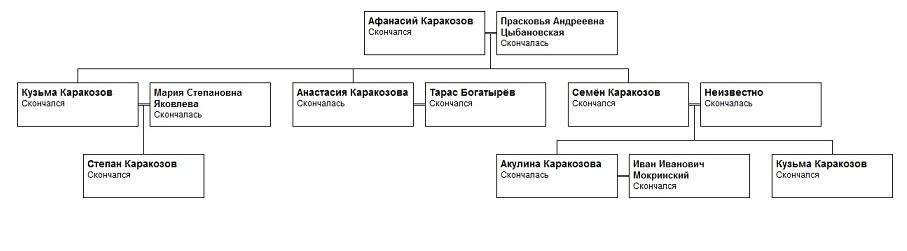 """Каракозовы """"Татищевская"""" ветвь"""