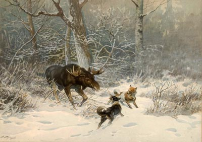 Охотничья сцена с лосем и двумя лайками.1900-е, холст, масло. Е.Тихменев